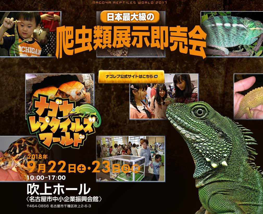 日本最大級の爬虫類展示即売会ナゴヤレプタイルズワールド2018