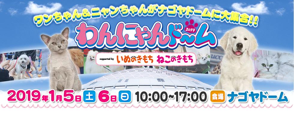 ワンちゃん&ニャンちゃんがナゴヤドームに大集合!わんにゃんドーム2019