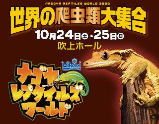 世界の爬虫類大集合 ナゴヤレプタイルズワールド2020